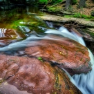 Mini hike to the upper falls on Ganoga Glen (Mohawk, Oneida and Cayuga). Plus a stop at Adams... Ricketts Glen State Park Luzerne County, Pennsylvania Tuesday, May 16th, 2017